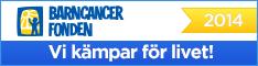 bcf_grund_banner2014_234x60